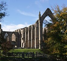 bolton abbey by rebecca metcalf