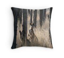 Kangaroos on Alert in the Bush Throw Pillow
