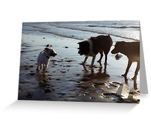 Play with me! Greeting Card