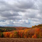 Fall Scenery 1 by vigor