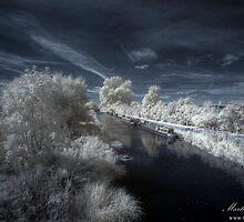Narrowboats in Waiting by Martin Finlayson