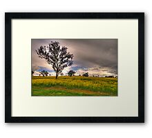 Along A Country Road - Central West NSW Australia - The HDR Experience Framed Print