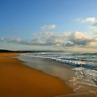 """Morning Sands"" 