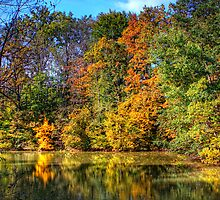 Autumn Lake by Delfino