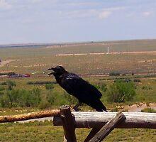 Black Bird Sitting On The Break Of Day  by ciaobella2u