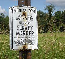 Witness Post by kdilts