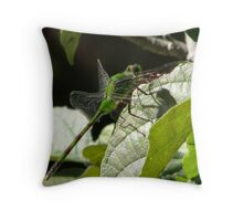 Great Pondhawk Dragonfly(erythemis vesiculosa) Throw Pillow