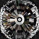 Where Have The Vinyl Records Gone? by Deborah Lazarus