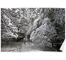 A Walk In The Snowy Forest Poster