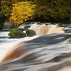 Aysgarth Upper Falls by James Dolan
