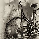 old bicycle in dappled light by nadine henley