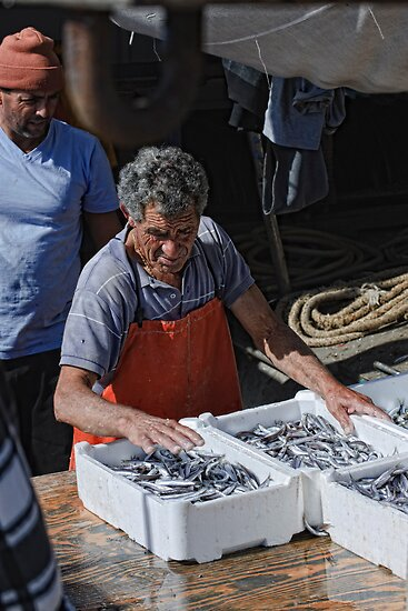 Packing the day's catch, Sciacca, Sicily by Andrew Jones
