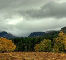 Cairngorm Autumn by Jamie  Green