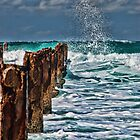 Splash by Philip Golan