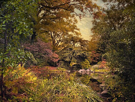 An Early Autumn by Jessica Jenney