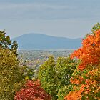 Autumn View From Monticello - Virginia - US - *featured  by Jack McCabe