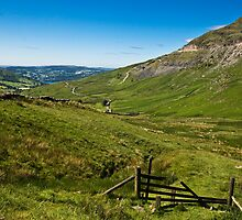 Kirkstone Pass  by Elaine123