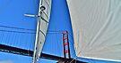 Sailing Under The Golden Gate by Scott Johnson
