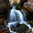 Cumberland Gap by stephcox