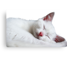 Sooooooooooooo Sleepy Canvas Print