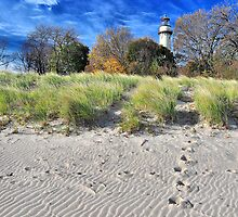 Footprints in the Sand by James Watkins