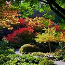 BUTCHART Gardens in FALL by AnnDixon