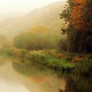 Fog along the river.. by Yool