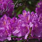 Thank You by David's Photoshop