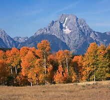 Teton Autumn by David Kocherhans