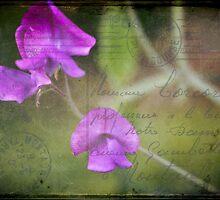 Send me no flowers by Rene Hales