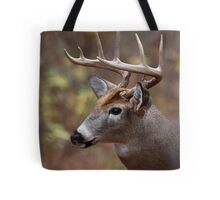 Big buck in front of me - White-tailed Deer Tote Bag