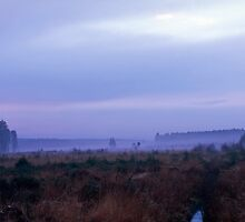 Mists rising at nightfall by intensivelight