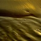 Sand and Water by Al Williscroft