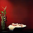 fine art newborn by Kristen  Caldwell