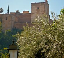 Alhambra Tower by Caz King