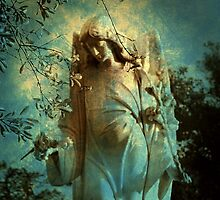 Cemetery Angel by Susanne Van Hulst