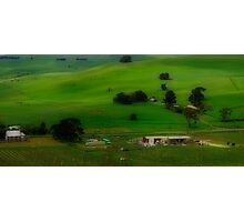 A Church, A Winery, A House, A Hill and A Few Cows Photographic Print