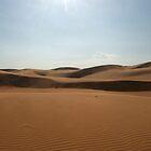 Sand Dunes in Mui Ne by Sergey Kahn