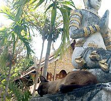 Siamese Cat Sleeps with Buddha by Sergey Kahn