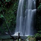 Beauchamp Falls - The Otways, Victoria - Australia by peterperfect