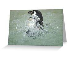 Penguin... Greeting Card