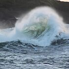 what can you see in the wave? by Jean O'Callaghan