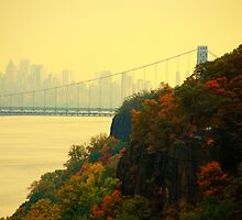 Rockefeller Overlook by John Schneider