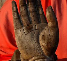 Hand of the disciple of Buddha by Tony Roddam