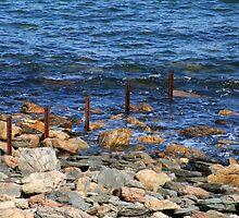 Rapid Bay by Joanne Emery