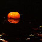 pumpkin afloat by tego53