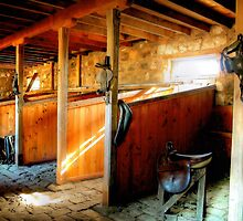 Inside the Stables at Barwon Park by Christine Smith