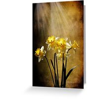 Spring Sun Greeting Card