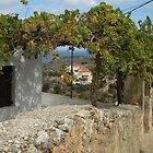 Quaint village of Kokkino Chorio, Crete. by Anne Sanders