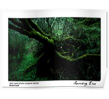 Running Tree Poster